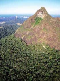 Mount Beerwah Track - Accommodation Bookings