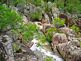Crows Nest National Park - Accommodation Bookings