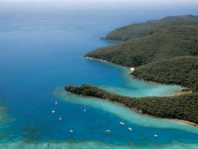 Butterfly Bay - Hook Island - Accommodation Bookings