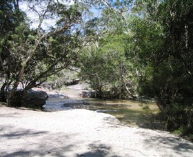 Davies Creek National Park and Dinden National Park - Accommodation Bookings
