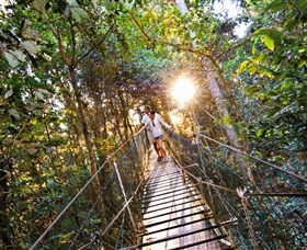 Tree Top Walkway - Accommodation Bookings