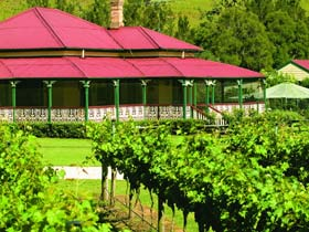 OReillys Canungra Valley Vineyards - Accommodation Bookings
