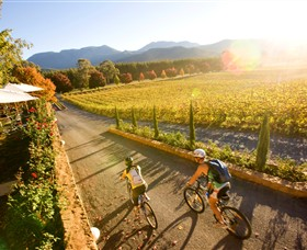 Boyntons Feathertop Winery - Accommodation Bookings