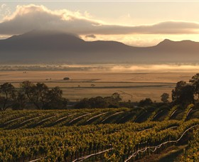 Montara Wines - Accommodation Bookings