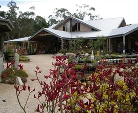 Kuranga Native Nursery and Paperbark Cafe - Accommodation Bookings