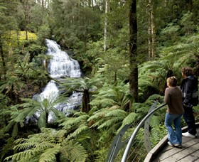 Great Otway National Park - Accommodation Bookings