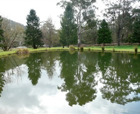 Mountain Fresh Trout and Salmon Farm - Accommodation Bookings