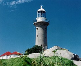 Montague Island Lighthouse - Accommodation Bookings