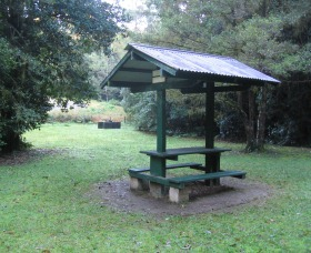 Pine Creek State Forest - Accommodation Bookings