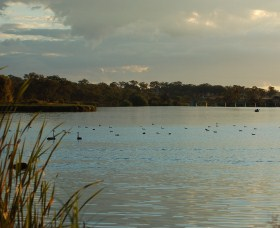 Lake Inverell Reserve - Accommodation Bookings