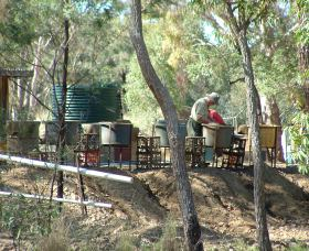 7 Oaks Sapphire Fossicking - Accommodation Bookings