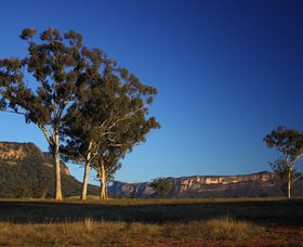 Capertee Valley Bird Trail - Accommodation Bookings