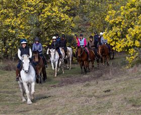 Burnelee Excursions on Horseback - Accommodation Bookings