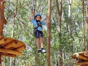 TreeTops Newcastle - Accommodation Bookings