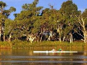 Martin Bend Reserve - Accommodation Bookings