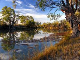 Murray River National Park - Accommodation Bookings