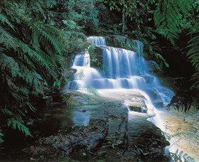 Leura Cascades - Accommodation Bookings