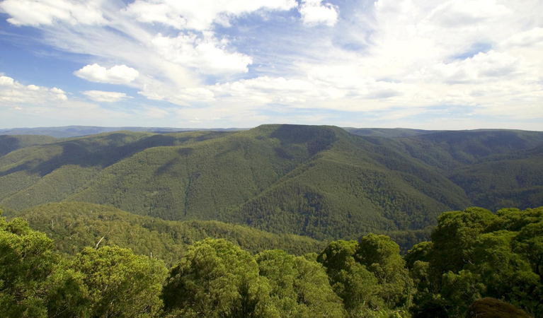 Barrington Tops National Park - Accommodation Bookings