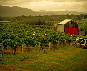 Around Hermitage Wine and Food Trail Hunter Valley - Accommodation Bookings