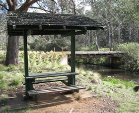 Barrington Tops State Forest - Accommodation Bookings