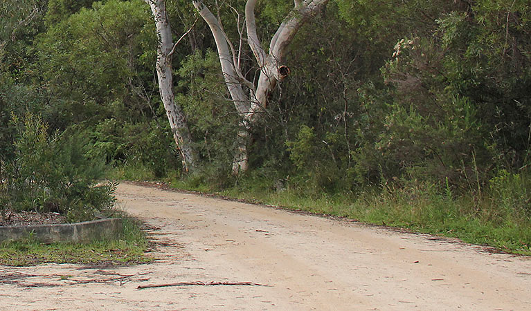 Riverview walking track - Accommodation Bookings