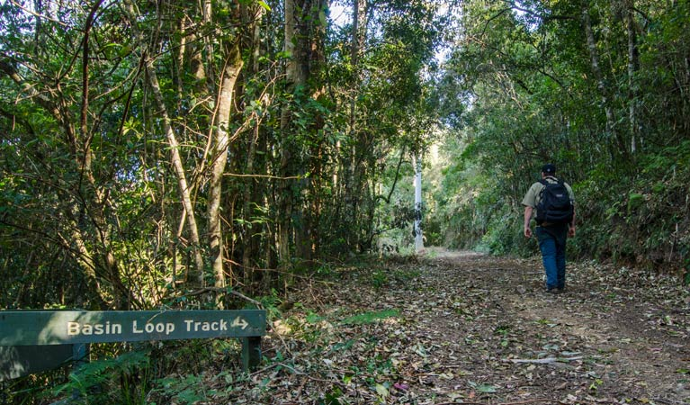 Basin Loop track - Accommodation Bookings