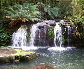 Barrington Tops National Park Walks - Accommodation Bookings