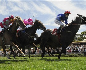 Moruya Racecourse - Accommodation Bookings