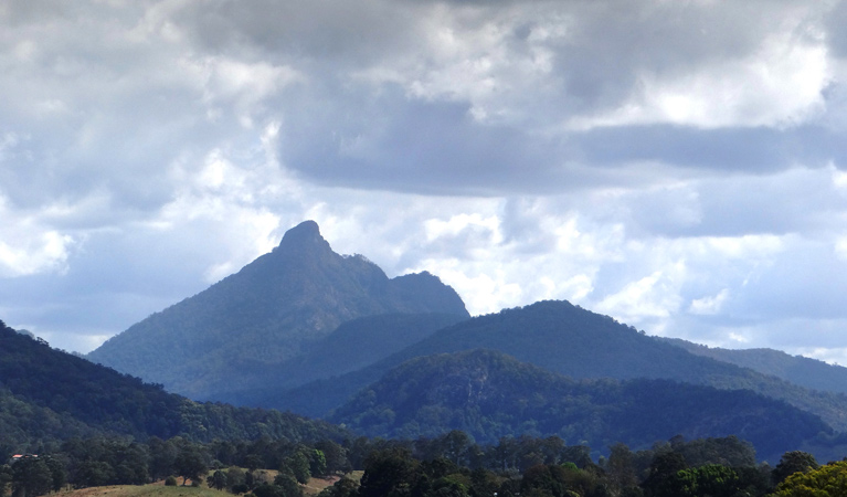 Wollumbin National Park - Accommodation Bookings