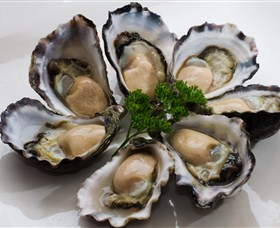 Tathra Oysters - Accommodation Bookings