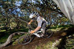 All Terrain Cycles - Accommodation Bookings