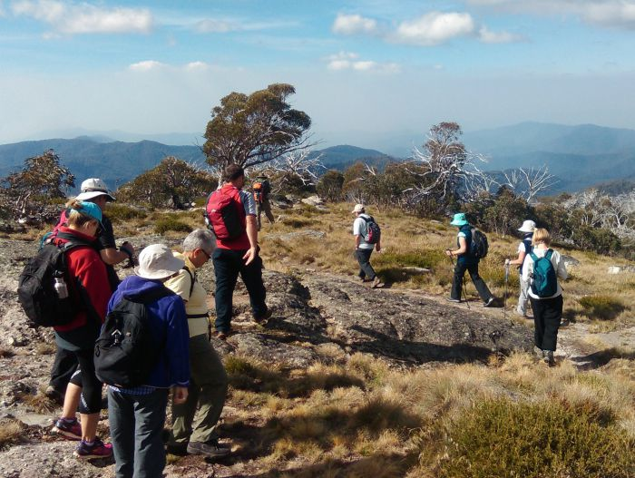Hedonistic Hiking - Accommodation Bookings