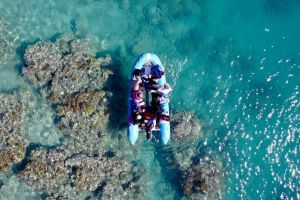 Glass-bottom boat tour with Whitehaven Beach - Accommodation Bookings