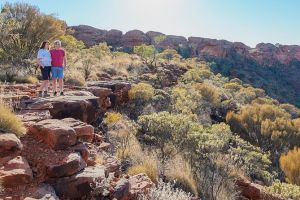 Kings Canyon Day Trip from Ayers Rock - Accommodation Bookings