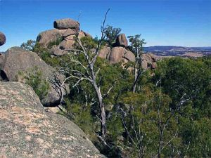 Evans Crown Nature Reserve - Accommodation Bookings