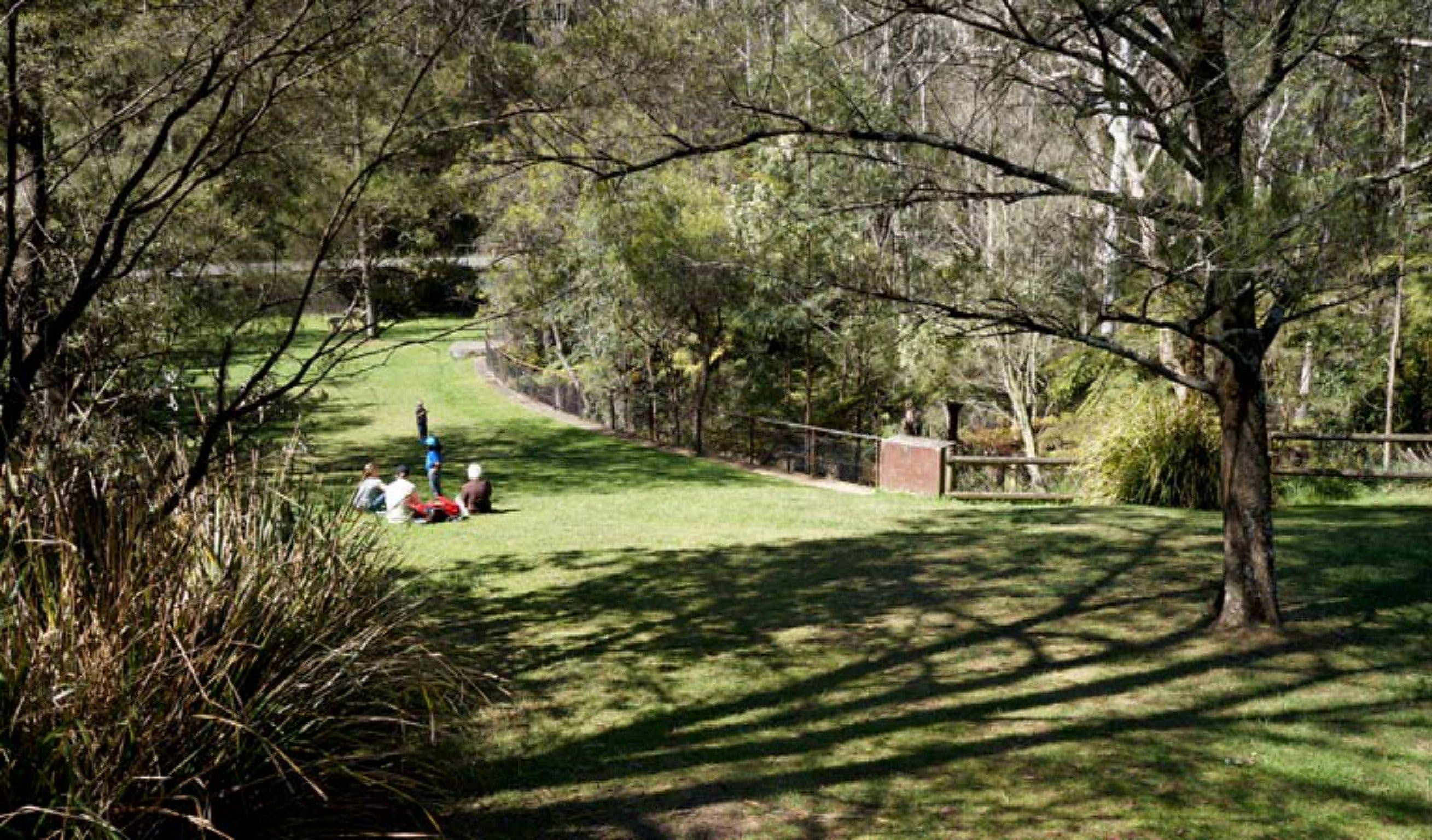 Leura Cascades picnic area - Accommodation Bookings