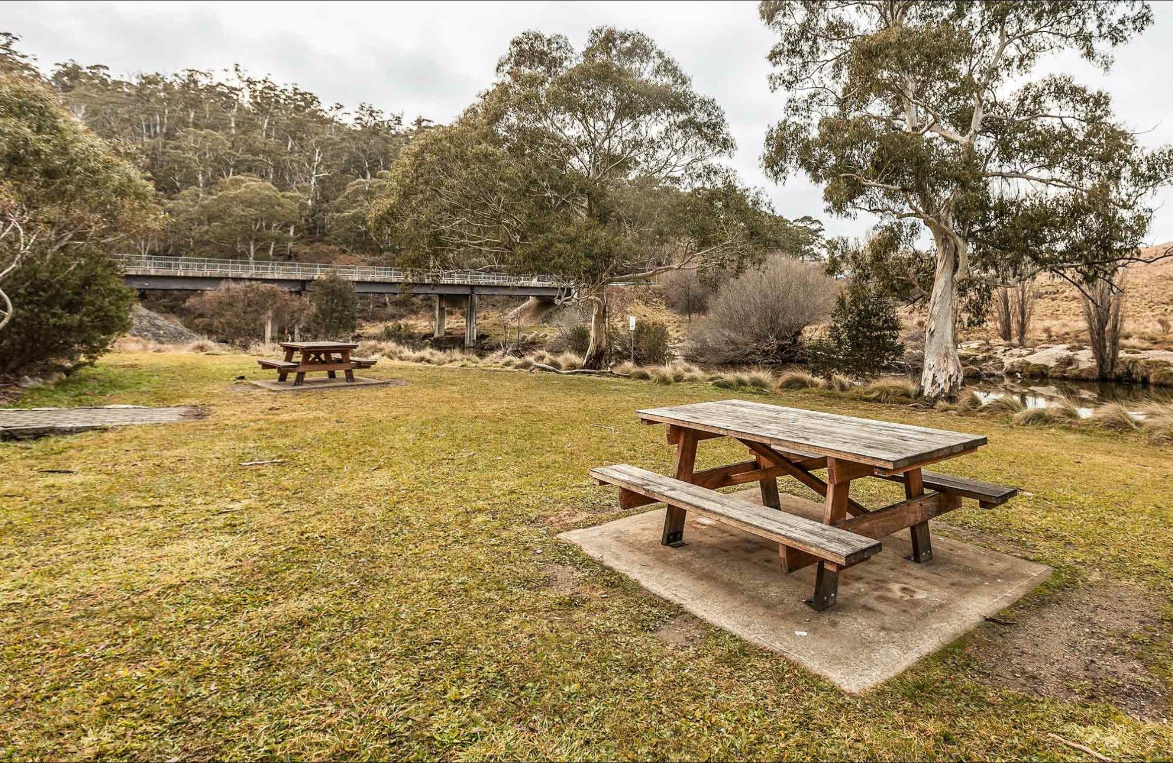 Thredbo River picnic area - Accommodation Bookings