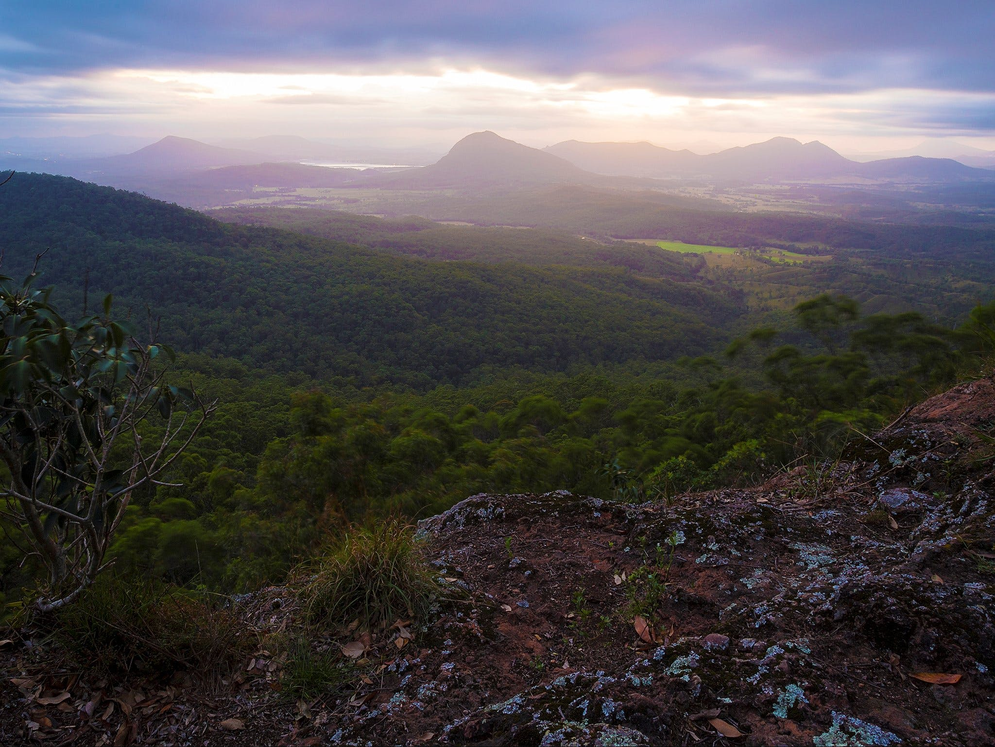Cunninghams Gap and Spicers Gap Main Range National Park - Accommodation Bookings