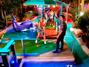 Putt Putt Mermaid Beach - Accommodation Bookings