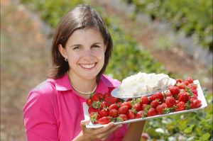 The Super Strawberry - Accommodation Bookings