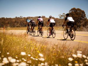 7 Peaks Ride - Dinner Plain - Accommodation Bookings
