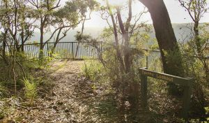 Bundanoon Creek walking track - Accommodation Bookings