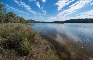 Lake Innes Nature Reserve - Accommodation Bookings