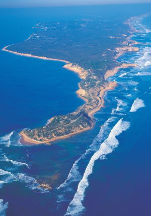 Point Nepean National Park Trails - Accommodation Bookings