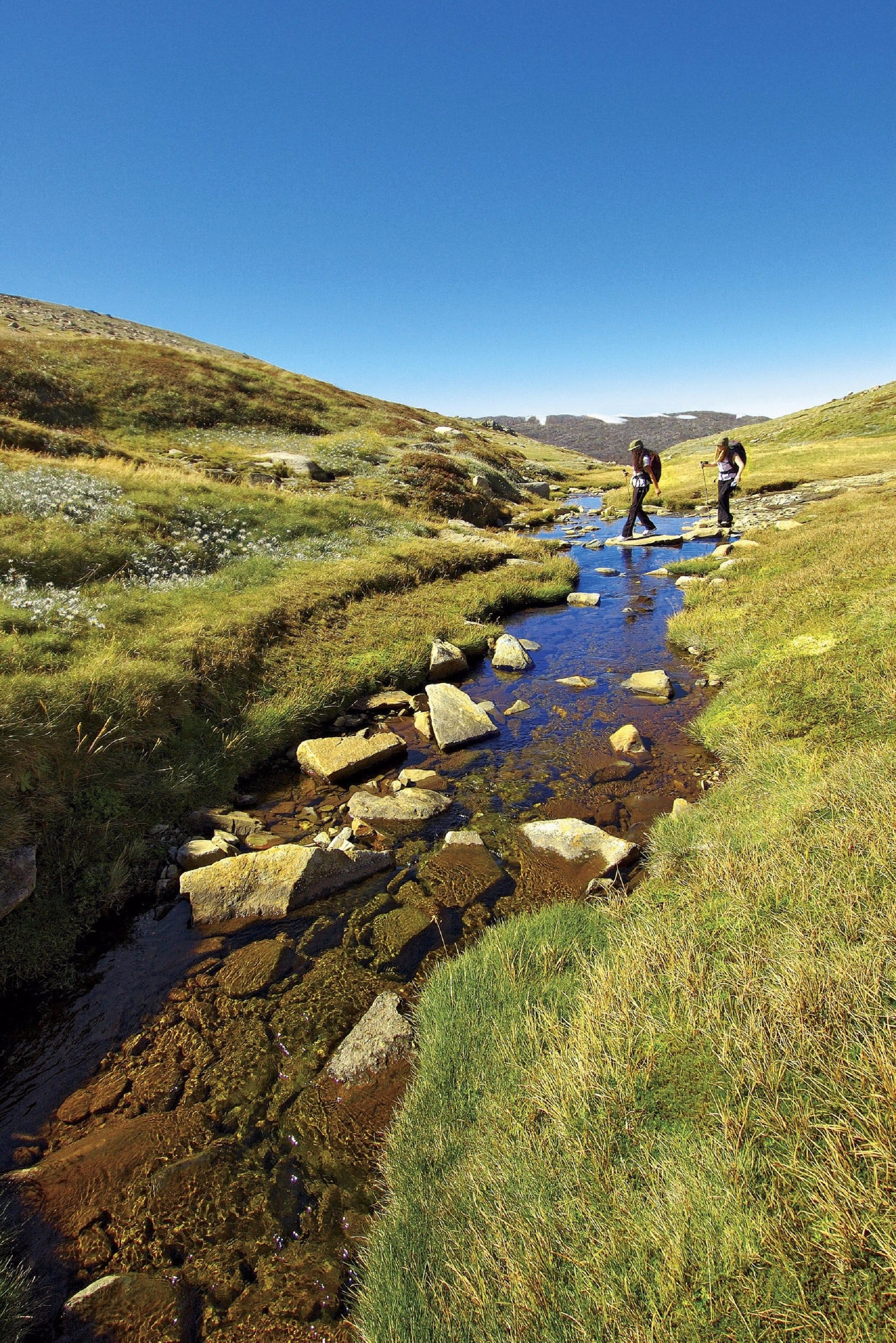 Australian Alps Walking Track - Accommodation Bookings