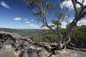Bundanoon - Accommodation Bookings