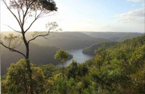 Great North walk - Berowra Valley National Park - Accommodation Bookings