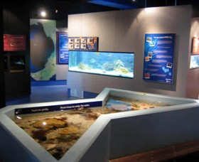 Marine and Freshwater Discovery Centre - Accommodation Bookings