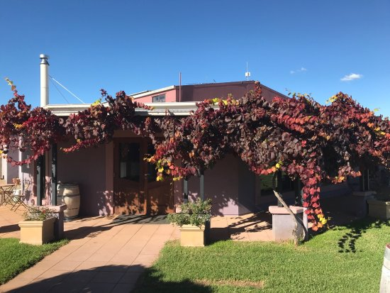 Jester Hill Wines - Accommodation Bookings
