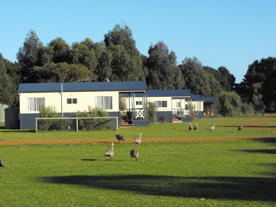 Western KI Caravan Park  Wildlife Reserve - Accommodation Bookings